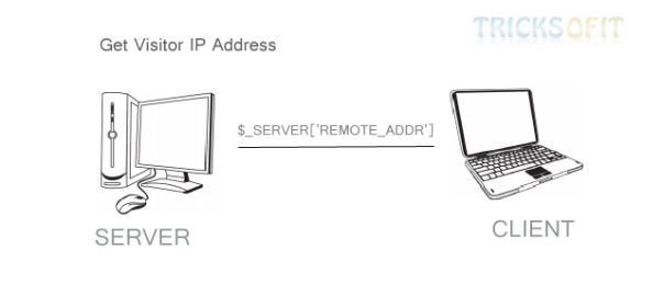 Get Visitor IP Address
