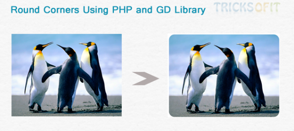 Round Corners on Image Using PHP and GD Library