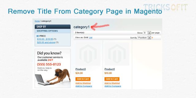 Remove Title From Category Page in Magento